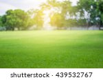 Lawn Blur With Soft Light For...