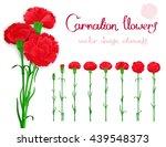 vector set isolated of flowers... | Shutterstock .eps vector #439548373