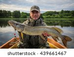 pike fishing in summer... | Shutterstock . vector #439661467