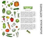 hand drawn doodle vegetables... | Shutterstock .eps vector #439704493