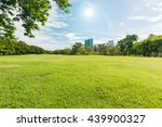 Green Grass Field In Park At...