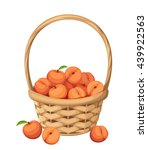 vector woven basket with peach... | Shutterstock .eps vector #439922563