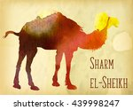 hand drawn camel vector image | Shutterstock .eps vector #439998247