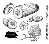 cucumber hand drawn vector set. ... | Shutterstock .eps vector #440240833