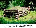 Beautiful Natural Compost Heap...