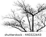 silhouette isolated tree on... | Shutterstock .eps vector #440322643