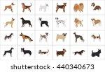 dog set | Shutterstock .eps vector #440340673