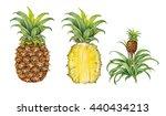 realistic illustration of... | Shutterstock . vector #440434213
