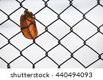 dry leaf on mesh fence as... | Shutterstock . vector #440494093