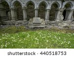 Headford  Ireland   June 20 ...
