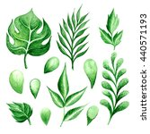 set of green watercolor leaves. ... | Shutterstock . vector #440571193