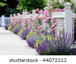 Stock photo colorful garden border white fence and pink roses 44072212