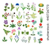 set of decorative vector plants | Shutterstock .eps vector #440726773