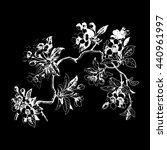 leaves isolated tree wallpaper... | Shutterstock . vector #440961997