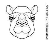 Camel. Head Of Camel. Camel's...