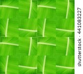 Small photo of background with texture of abaca leaves