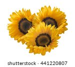 Sunflower Group 3 Isolated On...