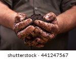 Bunch Of Good Soil In Hands Of...