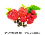 mix of fresh and ripe berries... | Shutterstock . vector #441293083