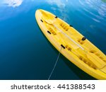 colorful kayak align the waters ... | Shutterstock . vector #441388543