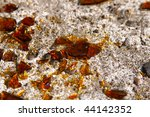 sharp pieces of glass scattered ... | Shutterstock . vector #44142352