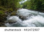 Mountain River Among Stones In...