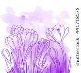 crocuses. flowers line drawn on ...   Shutterstock .eps vector #441718573
