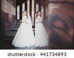 elegant bride mirroring on the... | Shutterstock . vector #441734893
