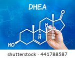 Small photo of Hand with pen drawing the chemical formula of DHEA