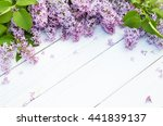 Bouquet Of Purple Lilacs...