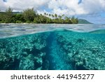 landscape over and under water... | Shutterstock . vector #441945277