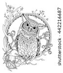 Coloring Page For Adults  Owl...