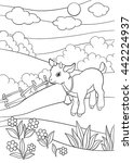 Coloring Pages. Farm Animals....
