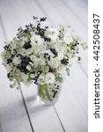 fresh winter bouquet on white...   Shutterstock . vector #442508437