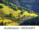 Scenic Countryside Landscape ...