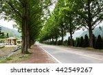 beautiful blue forest road | Shutterstock . vector #442549267