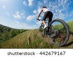 sport bike woman on a meadow... | Shutterstock . vector #442679167