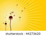 faded dandelions   vector file   Shutterstock .eps vector #44273620