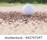 golf ball on the lawn   golf... | Shutterstock . vector #442747297