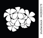 frangipani silhouettes for... | Shutterstock .eps vector #442820173