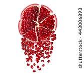 half  seed and segment... | Shutterstock .eps vector #443006893