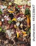 Small photo of organic waste taken from above. Bio-waste with pieces of eggs, vegetables and other food in decomposition.