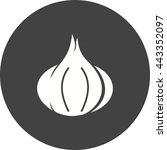 garlic   Shutterstock .eps vector #443352097