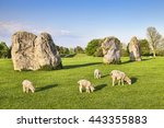 Part Of The Stone Circle At...