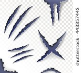 claws animal scratches on a... | Shutterstock .eps vector #443357443