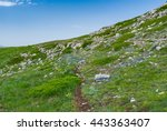 Spring Landscape With Hiking...
