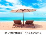 beautiful beach. chairs on the  ... | Shutterstock . vector #443514043