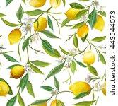 seamless floral pattern. lemon... | Shutterstock .eps vector #443544073