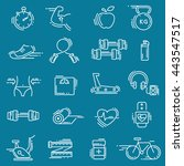 sports line icon  for web and... | Shutterstock .eps vector #443547517