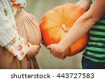 Man Holds A Pumpkin Standing...